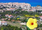 Apartments in Tropea
