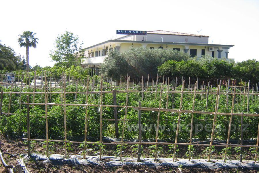 Pensione Capo Vaticano in Calabria