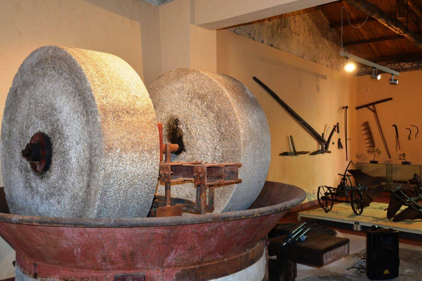 molazze-frantoio-museo-ricadi