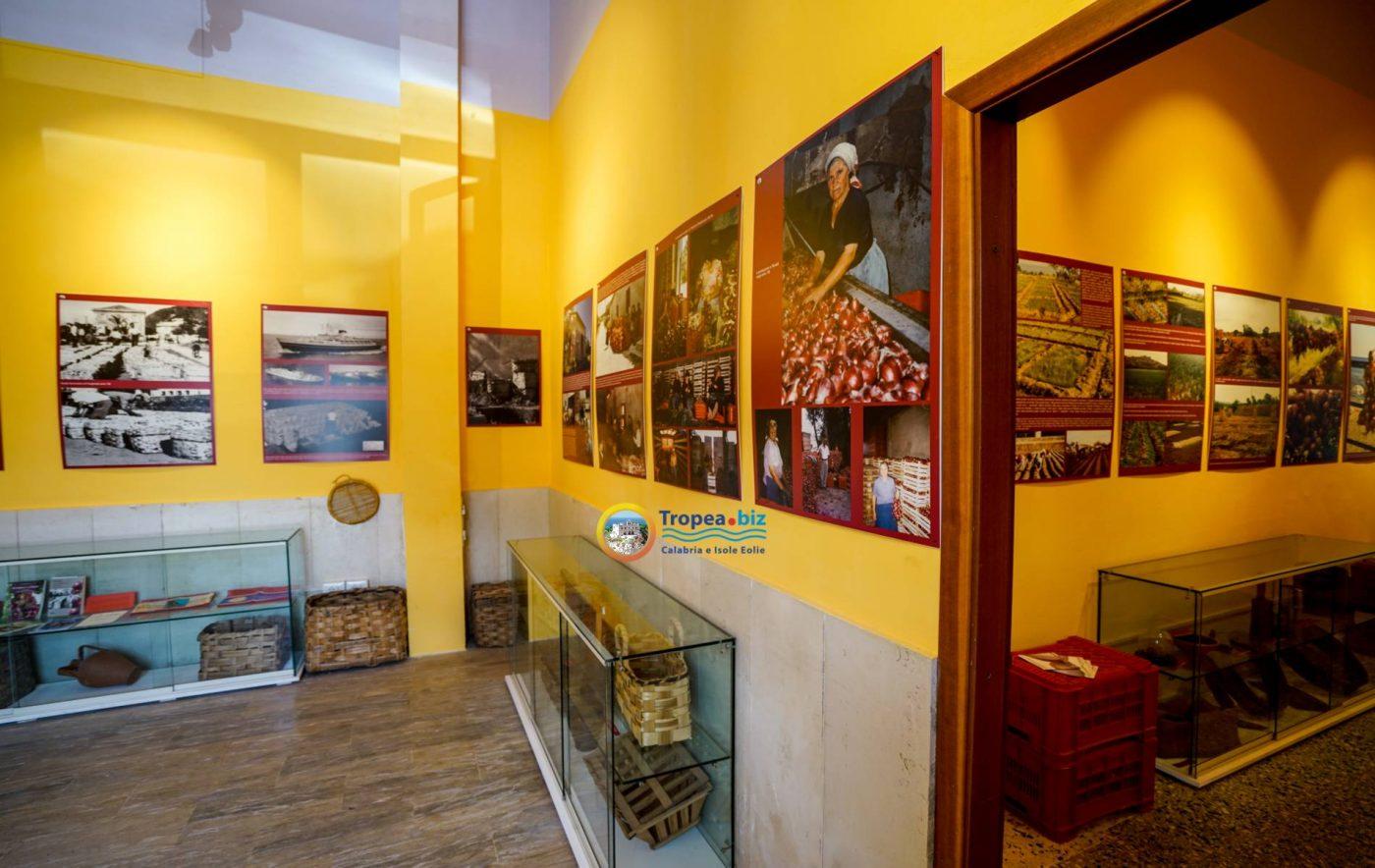 Museo della Cipolla