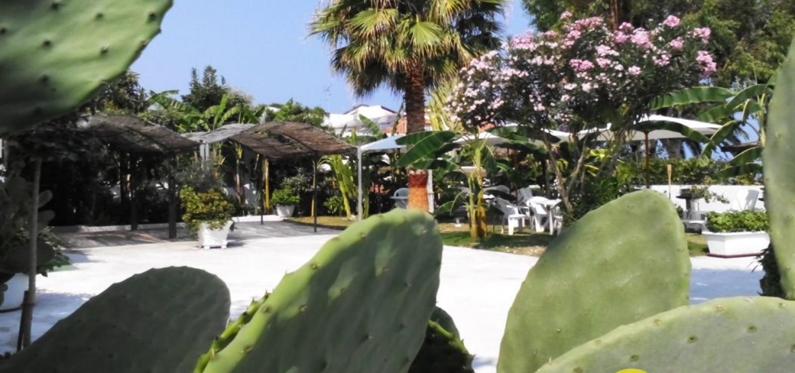 Casa Vacanze, Affitto per vacanze, Cervo , ID Struttura 1139, La Pizzuta, Parghelia, Vibo Valentia, Italy, 89861,