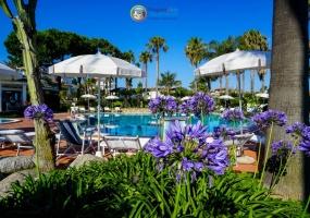 Hotel, Affitto per vacanze, ID Struttura 1161, Viale Giuseppe Berto s.n.c, vibo valentia, Italy,