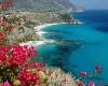 Casa Vacanze, Affitto per vacanze, ID Struttura 1231, Capo Vaticano, Ricadi, Vibo Valentia, Italy, 89866,