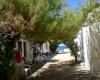 Villaggi, Affitto per vacanze, ID Struttura 1061, Marina di Zambrone, zambrone, vibo valentia, Italy, 89868,
